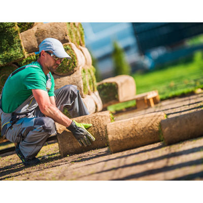 A man landscaping by laying sod on the ground