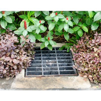 A storm drain surrounded by bushes and plants