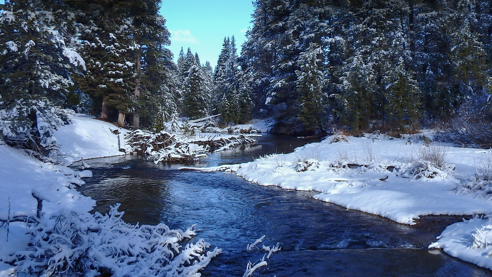 Truckee River in the winter surrounded by snow